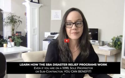 SBA Covid-19 Disaster Relief Program Overview (EIDL & PPP)