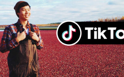 Ocean Spray and TikTok: The Gift of a Marketing Moment